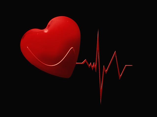 srdeční křivka