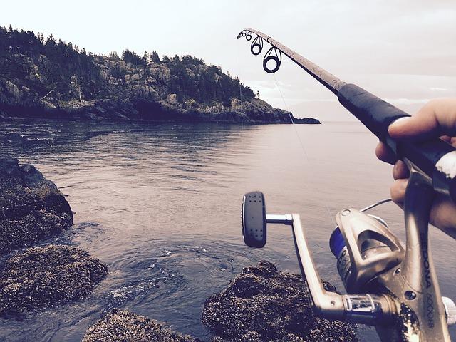 skály, voda, rybářský prut